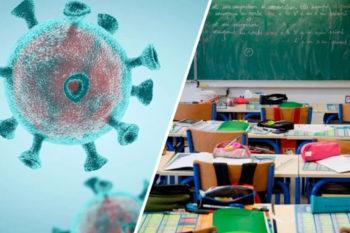 docentes-profesores