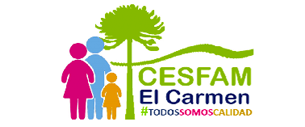 cesfam copia